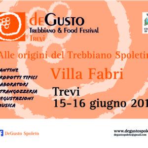Degusto Banner 300x250 2019 trevi (1)