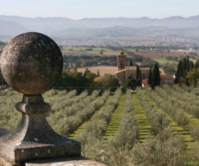 oliveti poreta